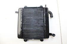 Radiator (Coling System) GTR 50cc.  CPI-64A-06500-00-00