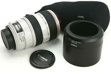 Canon EF 70-300 f/4-5.6 L IS USM, GUT