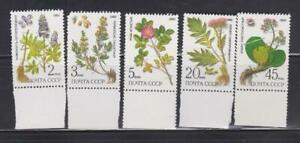 FLWR669 - FLOWER STAMPS 1985 RUSSIA FLOWERS FLORA MNH