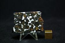 Sericho Pallasite meteorite 42.4 grams