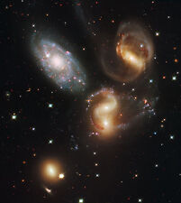 CLUSTER OF 5 GALAXIES Hubble Deep Space Image Rolled Canvas Giclee 24x26 in.