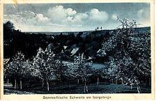 Schwerta Lesna AK 1929 Sommerfrische Isergebirge Polen Polska 1503712