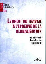Le droit du travail à l'épreuve de la globalisation