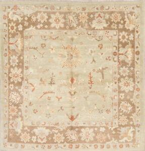 Vegetable Dye Square Muted Sage Green 7'x7' Oushak Turkish Oriental Wool Rug