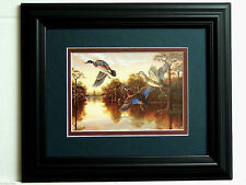 WOOD DUCK PICTURE WOOD DUCKS FLYING DUCK HUNTING WATERFOWL MATTED FRAMED 8X10