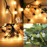Outdoor String Lights Mains Powered Festoon Lighting 25FT G40 IP44 for...
