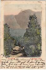 CGH: Postcard, Silver Trees-Wynberg Hill; Sea Point-Kingstown, Ireland,1 Fe 1905