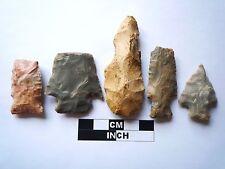 Native American des pointes x 5, véritable archaïque Artifacts, 1000BC-8000BC (967)