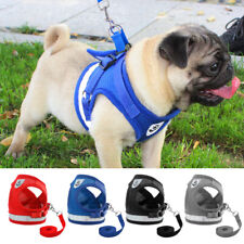 Reflective Pet Harness and Leash Safety Mesh Small Medium Dog Cat Walking Vest