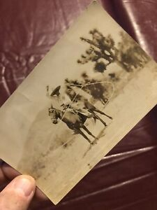 Vintage Used Picture Post Card. Roper, Cowboy. Horse. Old Post Card. Western