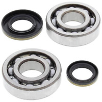 Crank Bearing & Seal Kit~2003 Suzuki RM250 All Balls 24-1046