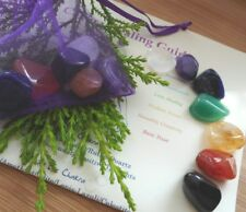 Chakra Healing Crystals 7 Colourful Crystals 12mm Reiki Healing with Gift Bag