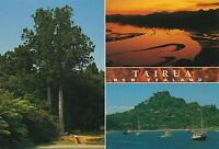 TAIRUA on the COROMANDEL PENINSULA NEW ZEALAND POSTCARD - NZ PC