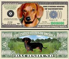 Dollarschein Dackel Dachshund Dog