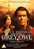 Pierce Brosnan, Annie Galipea-Grey Owl (UK IMPORT) DVD [REGION 2] NEW