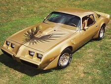 1980 Pontiac Trans Am Gold ( in Grass)  24 x 36 Poster