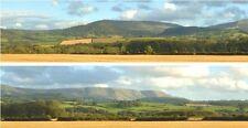 """ID 242 Backscenes 00 Gauge 'Harvest Hills' 2 x15"""" x 60"""" Rolls in Tube -T48 Post"""