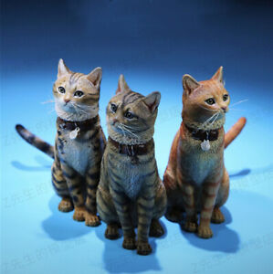 Mr.Z 1/6 Domestic Cat Felis catus Figure Animal Model Collector Toys Xmas Gift