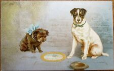 Dog & Puppy 1906 Color Litho Postcard w/Silver - Wildt & Kray