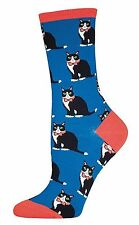 Cat Socks -Tuxedo Cat on Blue/Orange Trim Cat  Socks *One Size Fits Most