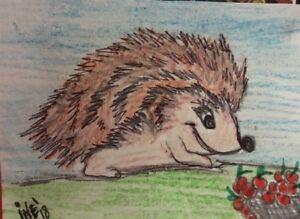 aceo original by Iné 1/1 pencil ✏️ Hedgehog .