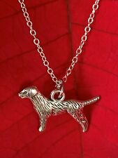 Fashion Jewelry Dog Pendant & 925 Silver Chain Necklace.