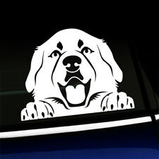 Peeking Great Pyrenees - Pyrenean Mountain Dog Decal - You choose the color