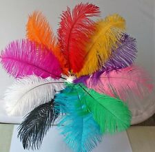 10 Mixed Colors 10pcs Ostrich Feathers Craft Wedding Party Decorations 8''-10''