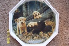 "Bradford Exchange Collector Puppy Dog Plate - ""Sweet Dreams"""