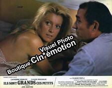 8 Photos Cinéma 21.5x27cm (1979) ILS SONT GRANDS CES PETITS Deneuve, Brasseur