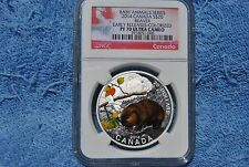 Canada, $20, NGC, Baby Animal Series, Beaver, Colorized PF70 UC, ER