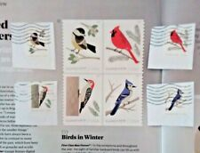 2018 Stamps: 2 Full Sets of 8 Stamps: SC#5317 - SC#5320:  Birds in Winter.