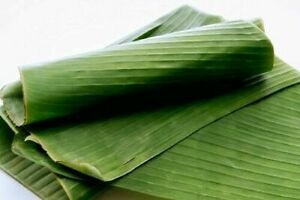 Fresh Banana Leaves 2 Lbs