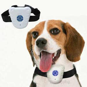 Ultrasonic Anti-Barking Dog Trainig Collar