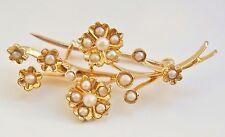 Ottima qualità Antico Vittoriano 15ct Oro Semi Pearl Floreale SPRAY Spilla c1895