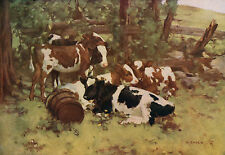 "DAVID GAULD R.S.A 1903 Oil Painting ""CONTENTMENT"" Vintage Art 1930 Book Print"