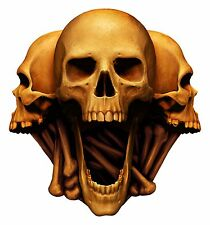 Scary Skull Sticker Heads Laptop Book Fridge Guitar Motorcycle Door PC Boat #38