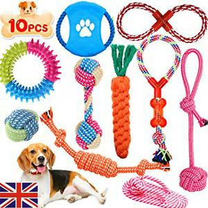 10x Dog Rope Toys Kit Tough Strong Chew Knot Ball Pet Puppy Bear Cotton Toy Bulk