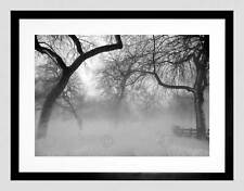 NATURE LANDSCAPE FOREST SNOW FOG ICE WINTER BLACK WHITE FRAMED PRINT B12X4056
