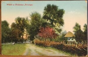 Vintage Postcard CHERRY TREES Cottage View from the Kingdom of Poland 1915