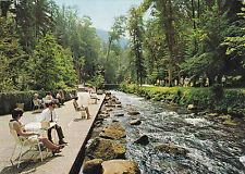 AK WILDBAD im Schwarzwald Sitzterrasse am Ufer der Enz   Parklandschaft