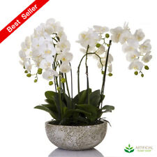 Artificial Fake Plants Orchid 62cm in round clay pot