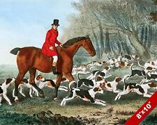 RIDER & HOUNDS FOX HUNT HORSE EQUESTRIAN HUNTING ART PAINTING REAL CANVAS PRINT