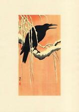 Japanese Reproduction Woodblock Print Crow #1 by Ohara Koson on Parchment Paper.