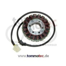 Stator Triumph Tiger 1050 115NG 2007 - 2012 grosser Stator Install and Drive