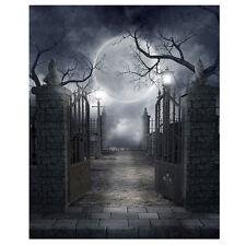 Halloween Vinyl Studio Backdrop Photography Prop Photo Background 10x10ft