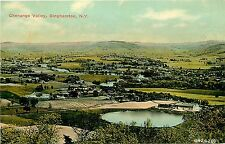 Binghamton Ny Chenango Valley Panoramic View P/C