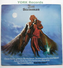 JIM STEINMAN - Bad For Good - Excellent Condition LP Record Epic EPC 84361