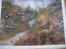 Kentucky Whitetail Art Print by Eastern Ky artist Danny Grim