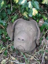 Hund Hunde Kopf Boxer Relief Wandbild Sandstein Antik Look Steinguß S 21 GRAU